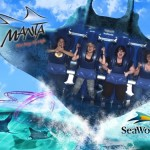 SeaWorld's Manta Roller Coaster in Orlando, Florida