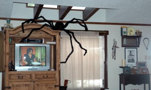 8 foot Halloween Spider