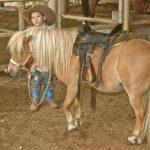 cowboy truett