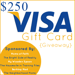 $250 Visa Gift Card {Giveaway}