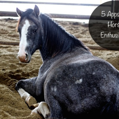 5 Apps for Horse Enthusiasts