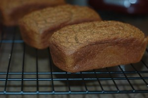 healthy pumpkin bread mini loaves