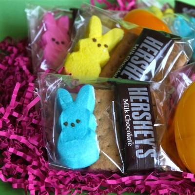 Spring DIY: Easter Peeps S'mores