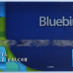 Using Bluebird to Teach Financial Responsibility