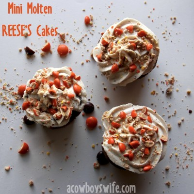 REESE'S Mini Cups Mousse for Mini Molten REESE'S Cakes