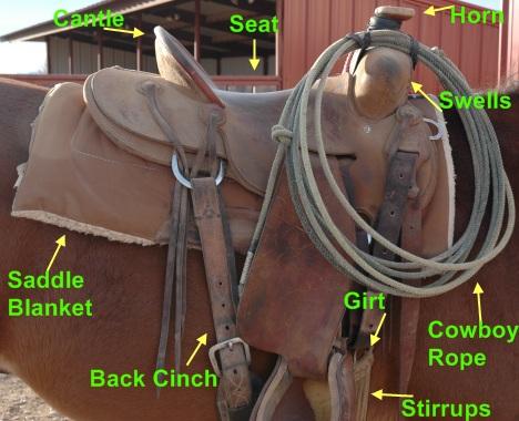 Saddles 101