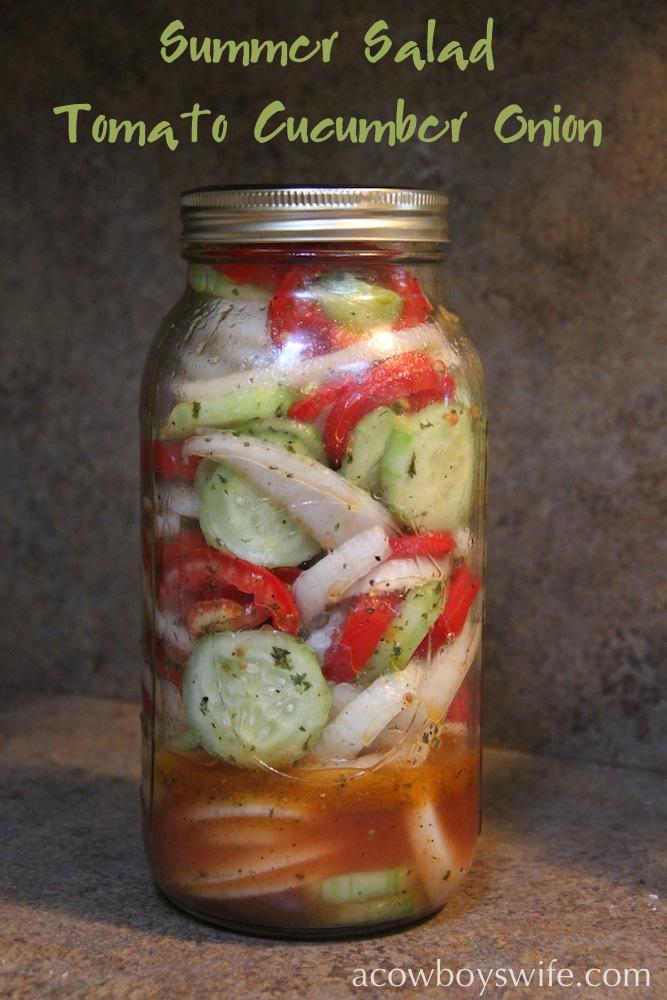 Tomato Cucumber Onion Summer Salad