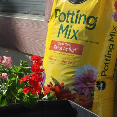 Gardening Essentials for a Healthy and Beautiful Yard