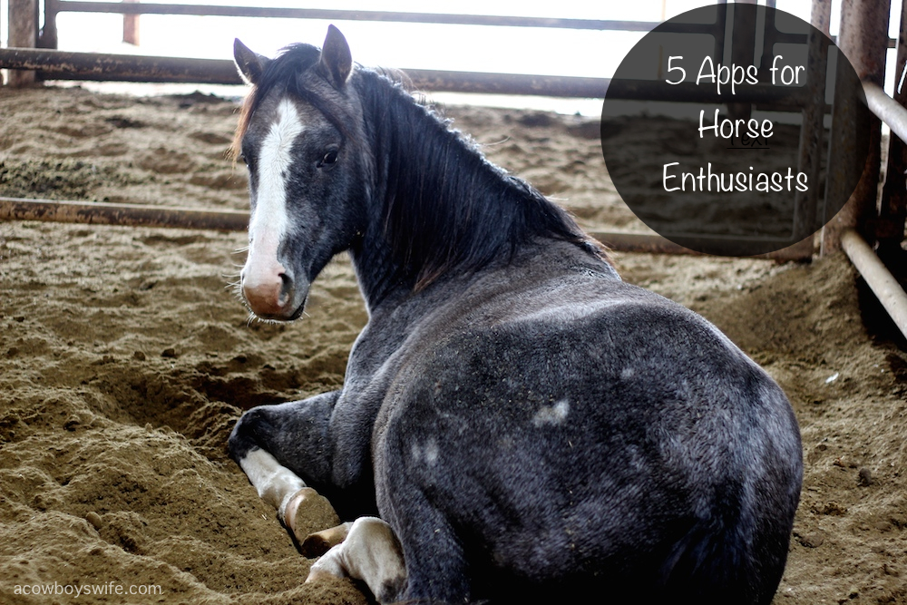 apps for horse lovers