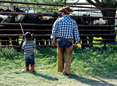 Father and Son cowboys