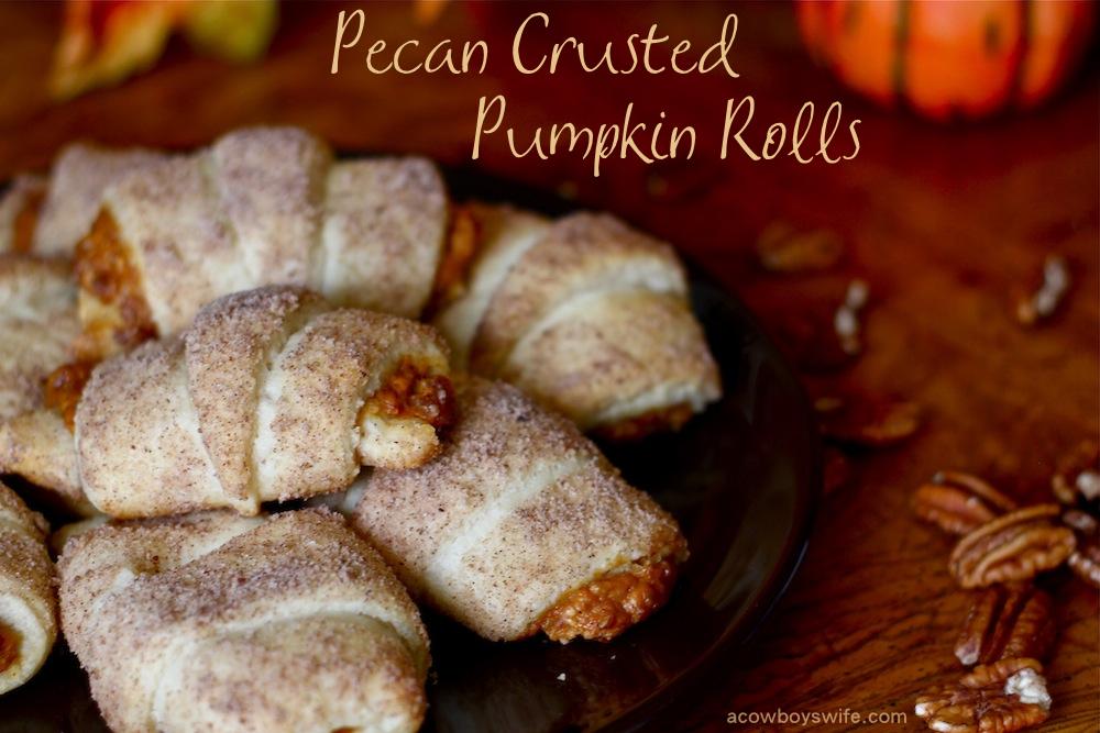 Pecan Crusted Pumpkin Rolls