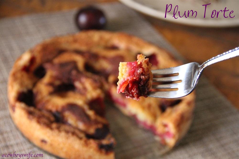 Plum Torte Bite
