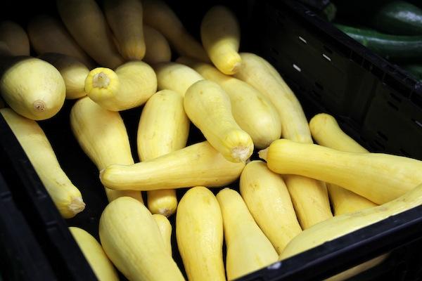 fresh produce squash